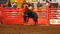 Stockyards Championship Rodeo - Fort Worth, TX